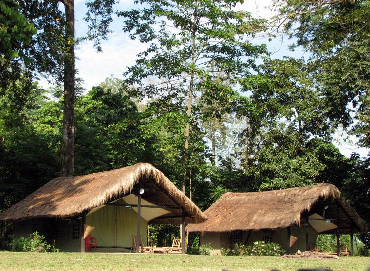 Camping in Nameri Eco Camp, Assam