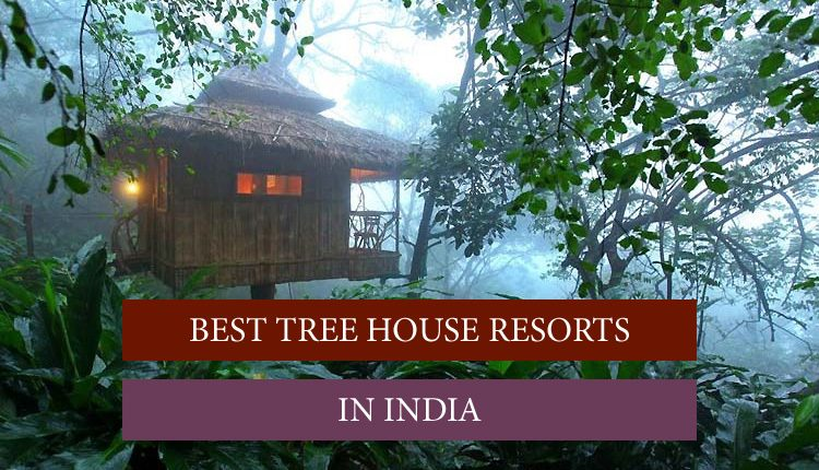 India's tree house resort with luxury accommodation