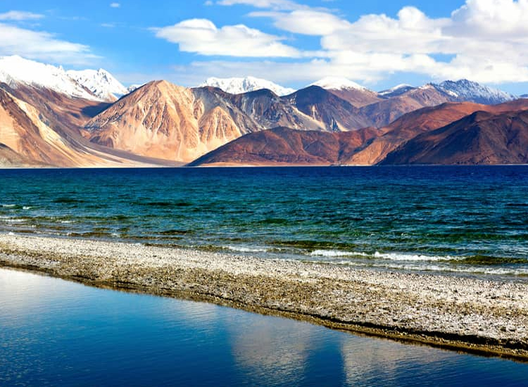 leh ladakh honeymoon tour