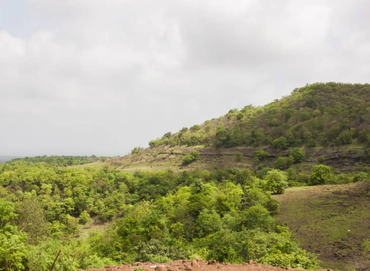 stay at Ananthagiri Hills