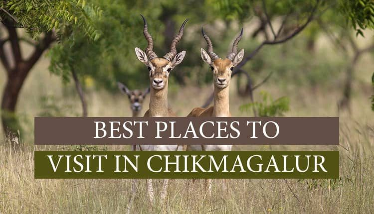 best places to visit in Chikmagalur?