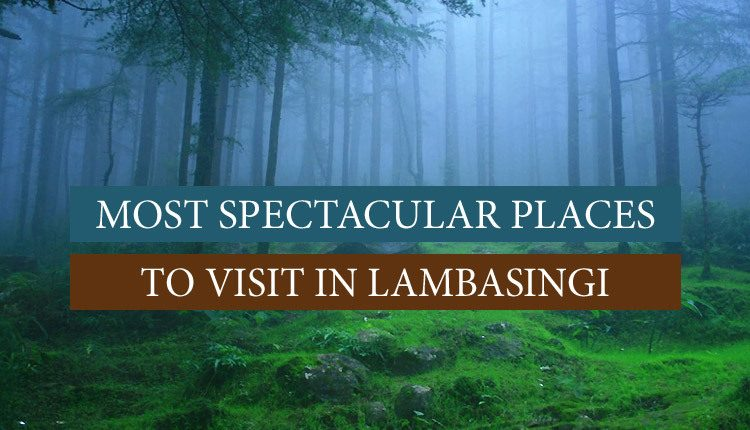 Visit these places in Lambasingi