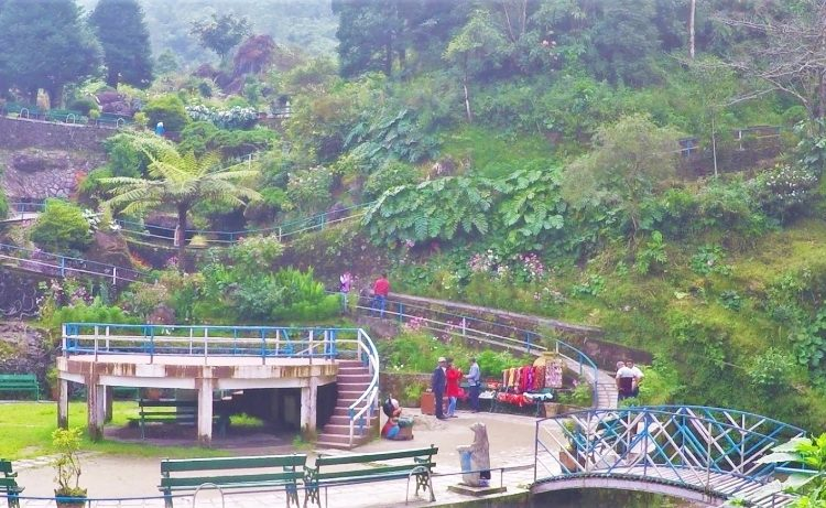 Rock garden in darjeeling